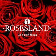 Rosesland